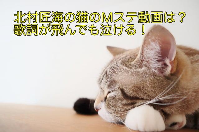 北村匠海 猫 Mステ 動画