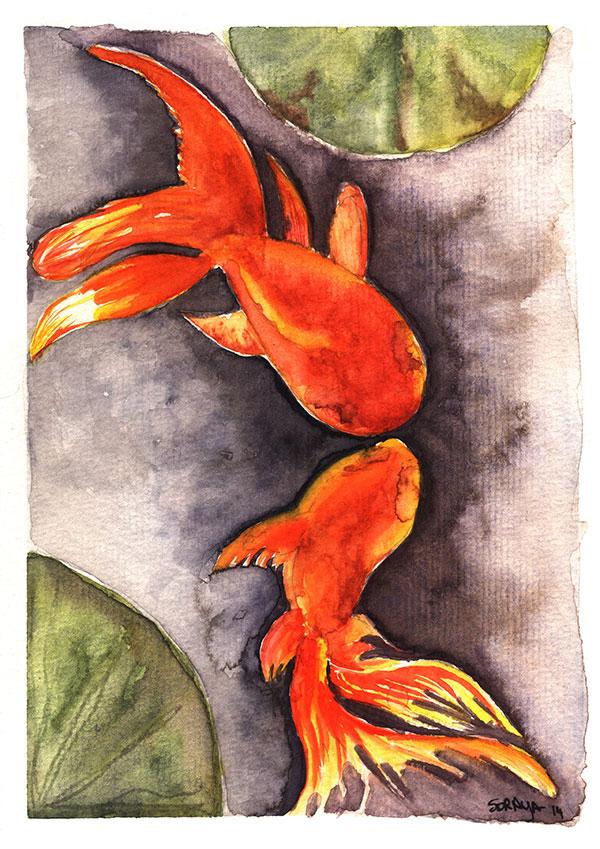 soraya pamplona ilustração aquarela oriental peixinho-vermelho red fish watercolour