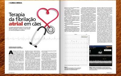 Participação na Revista Mais Natural. Ed. 56