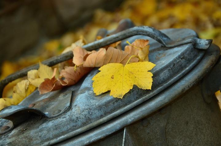 autumn-1013608_1280