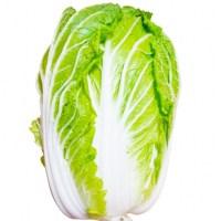 """万能野菜""""白菜"""""""