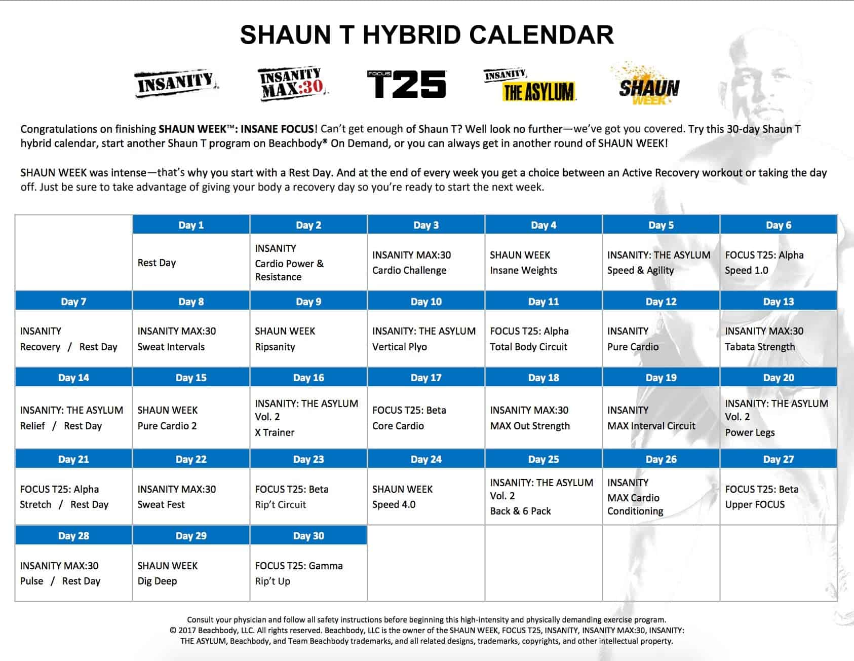 Insanity Max 30 Workout Schedule Excel
