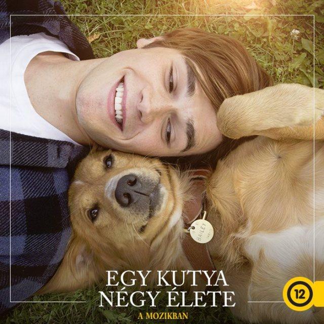 egy-kutya-negy-elete-02
