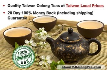 T-Oolong