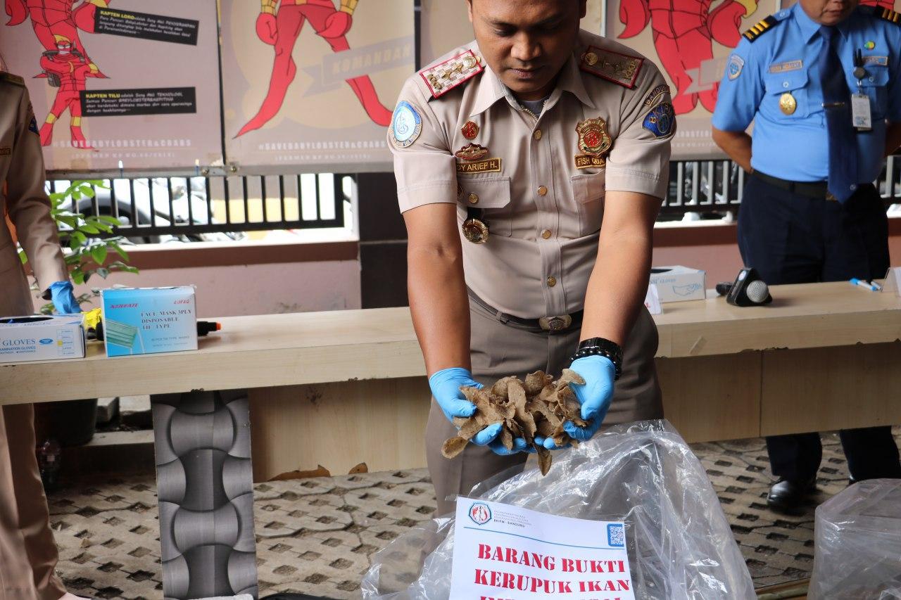 Kerupuk ikan asal Malaysia yang dimusnahkan BKIPM Bandung dan Bea Cukai