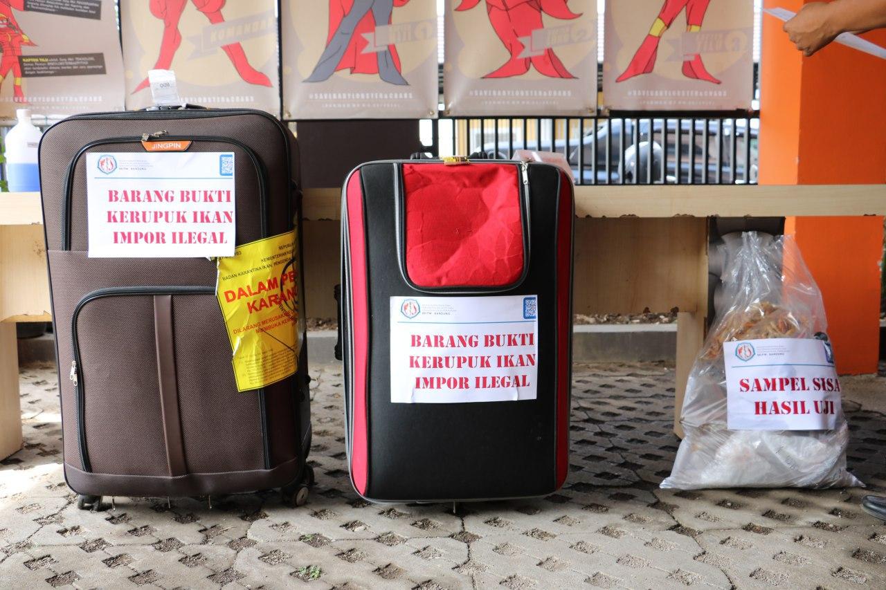 Barang bukti kerupuk ikan asal Malaysia yang dikemas dalam 2 koper yang dimusnahkan oleh BKIPM Bandung