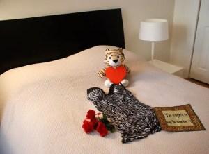 cama lenceria