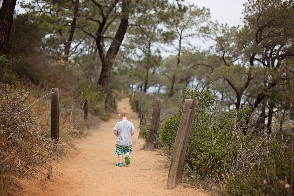 torrey pines nature reserve toddlers