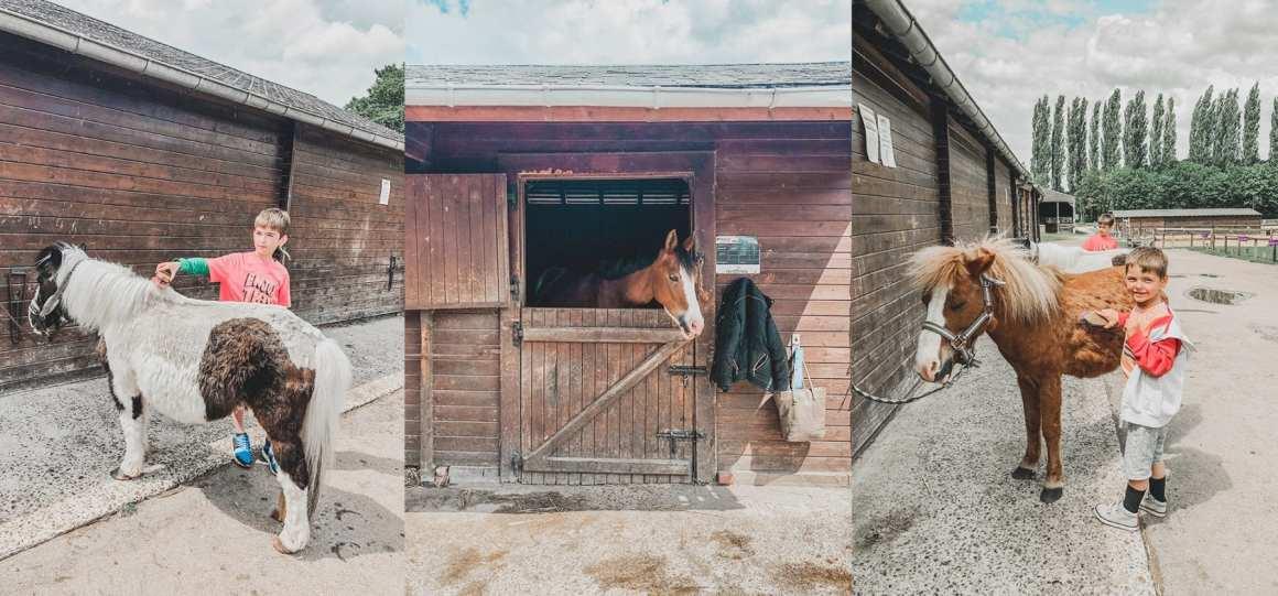 horse riding camping la croix du vieux pont