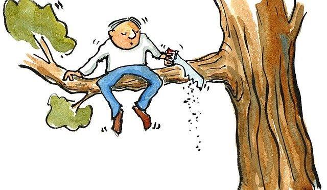 Gällande trädfällning i Sörsam
