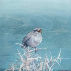 """Singing Wren"" - Open Edition Print by Lara Cobden"