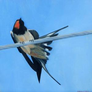 """Swallow l"" - Open Edition Print by Lara Cobden"