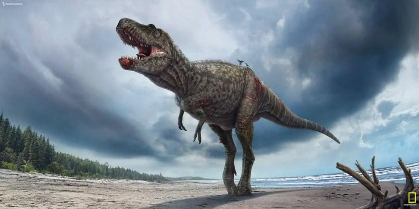 Dinosaur names - Gorgosaurus