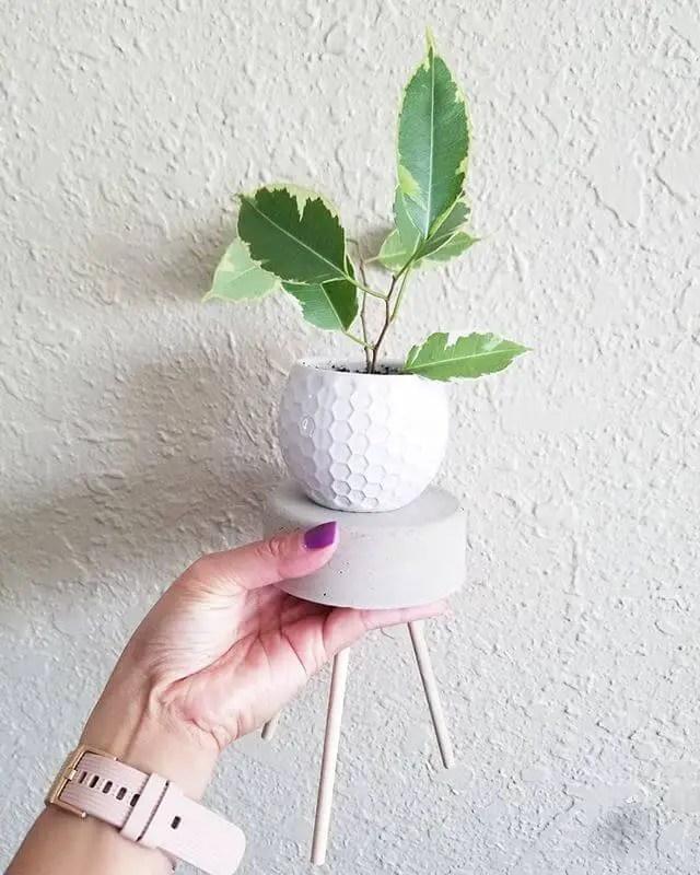 mini diy plant stand