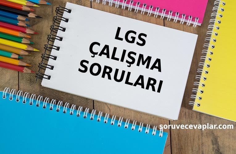 LGS Çalışma Soruları