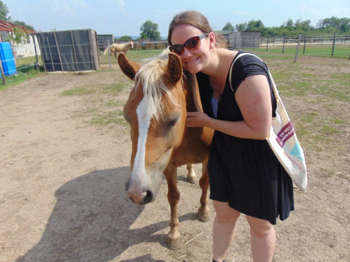 Dieses Pferd war sehr schmusebedürftig.
