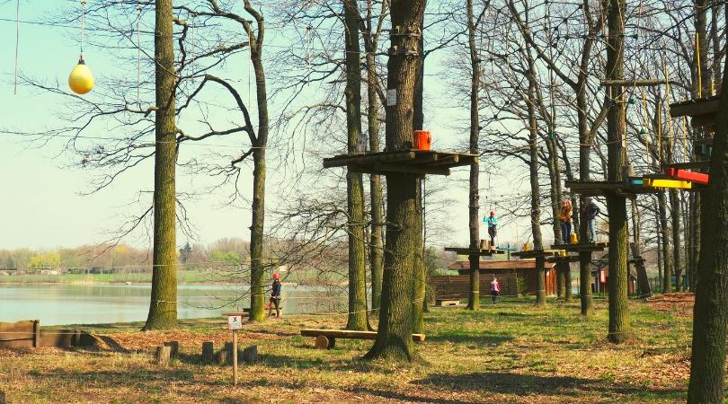 Kletterwald Leipzig Ausflugsziel
