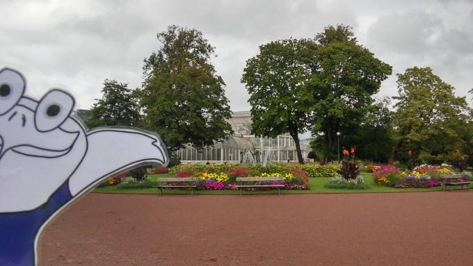 Ein Park, ein Palmenhaus, hier fühlt sich Oddy sicher wohl