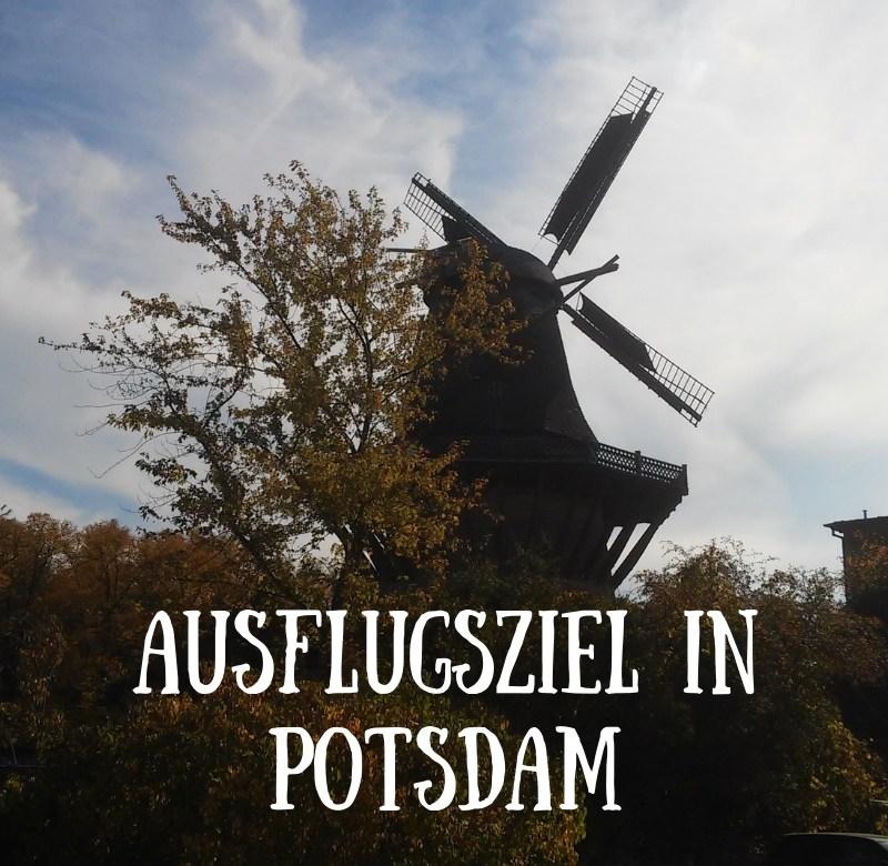 windmühle potsdam
