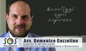 Cozzolino Domenico