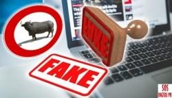 Fake News, Bufale... ne faremo a meno, ma continuano e continueranno ad esserci