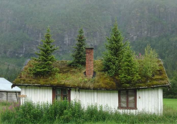 Just a normal house..._8da32127150ff7471a62617ab7b53d2c