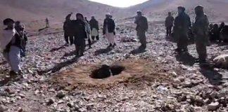 steinet av taliban