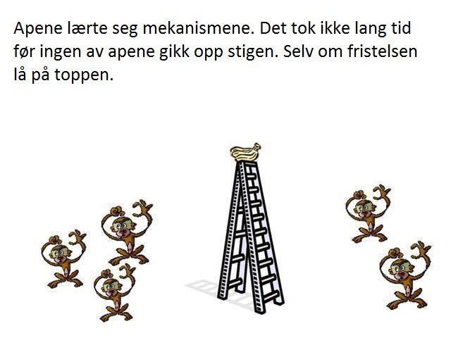 aper4