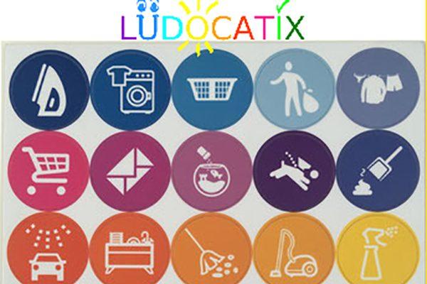 Ludocatix chore chart