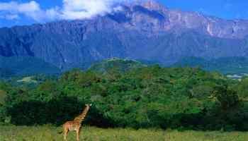 اهم الاماكن السياحية في تنزانيا