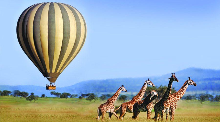 اهم المعالم السياحية في كينيا