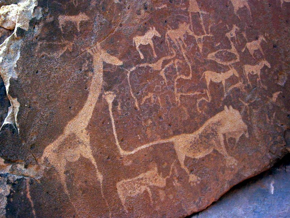 Lion_Twyfelfontein_Namibia