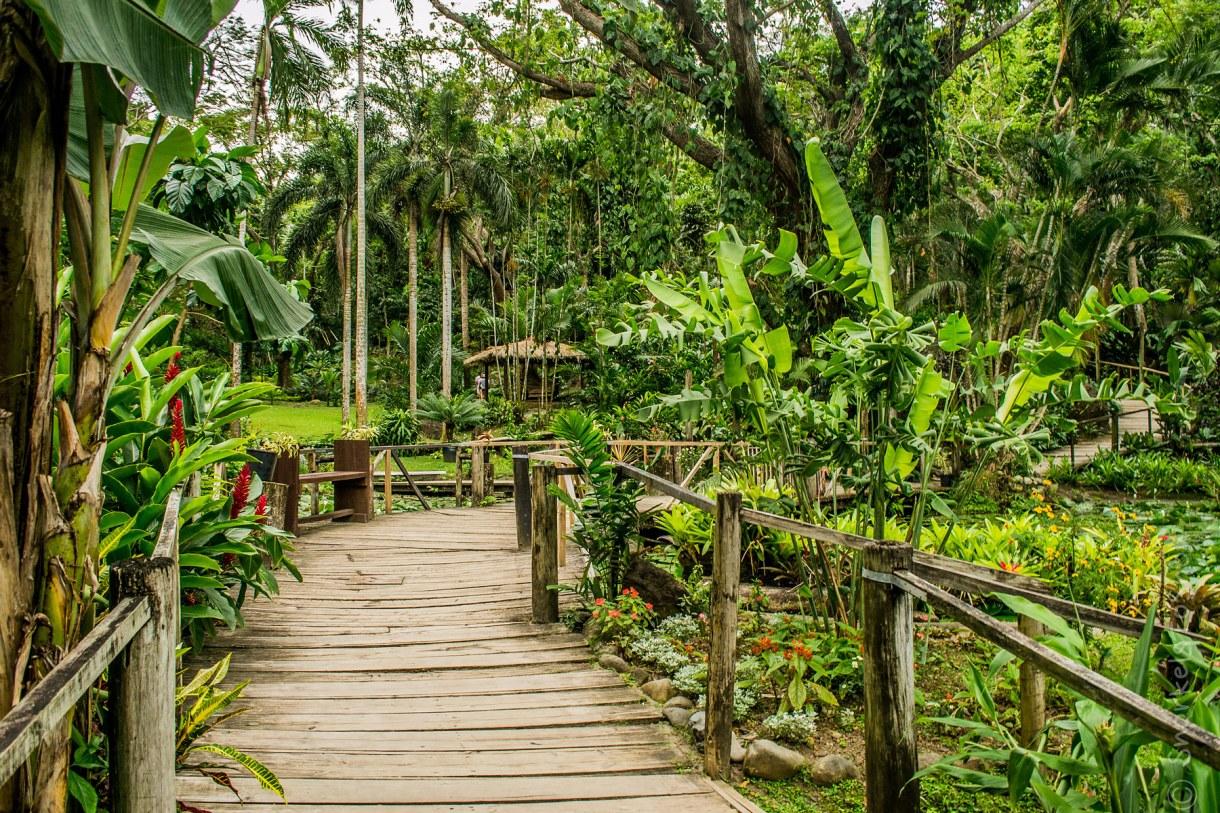 السياحة في جزر فيجي