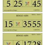 BINGO ABN: Cartones Resta Fase 6
