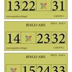 BINGO ABN: Cartones Resta Fase 8