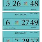 BINGO ABN: Cartones Resta Fase 11