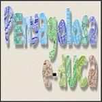 Página web Penyagolosa