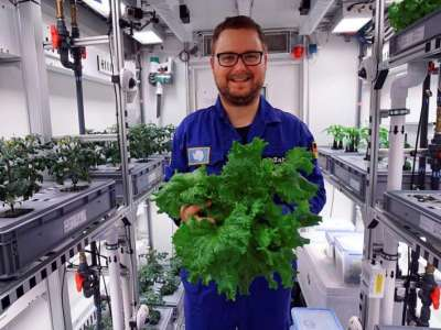 Han lograron cultivar verduras en la Antártida sin tierra, luz solar ni pesticidas