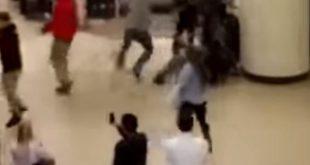 VIDEO Black Friday Brawl in California Goes Viral
