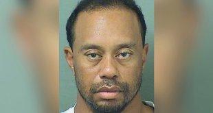 Legendary Golfer Tiger Woods Arrested for DUI in Florida