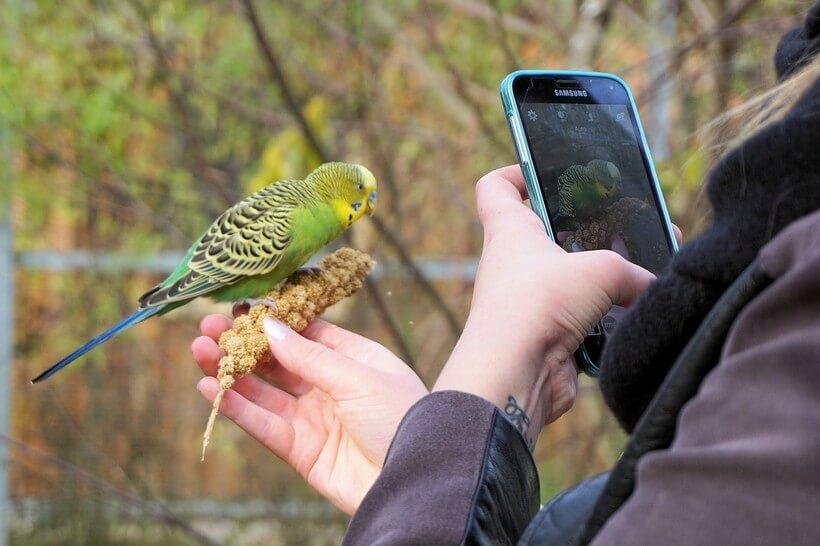 appareil photo samsung Comment bien choisir son smartphone avant de passer à l'achat