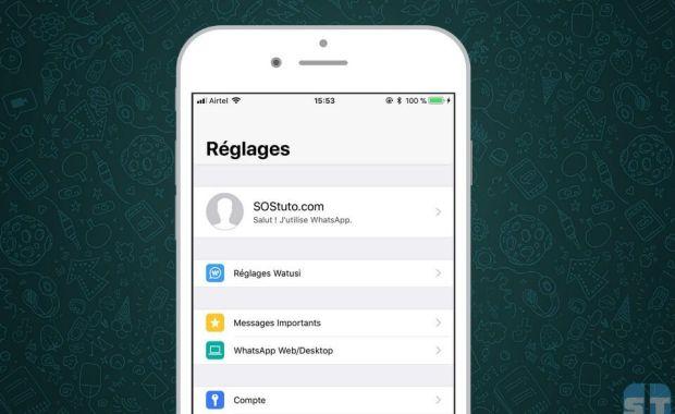 WhatsApp Watusi Télécharger WhatsApp++ et WhatsApp Watusi pour iOS sans jailbreak