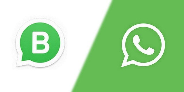 differences whatsapp business whatsapp Télécharger WhatsApp Business pour Android + Comment l'utiliser