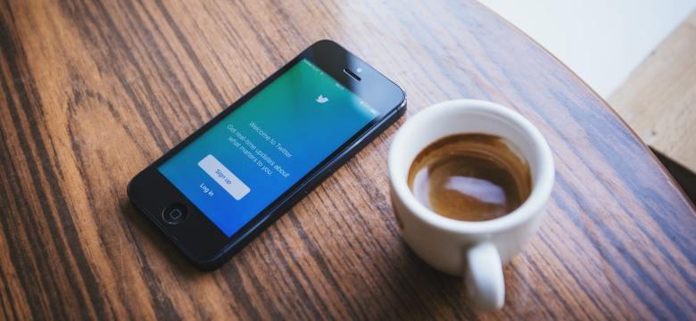 Hollanda'da Sosyal Medya Yasağı