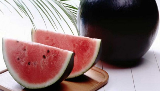 Densuke Black Watermelon — ,100 each