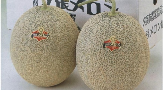 Yubari King Melons — 000 a pair