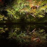 "Kodaiji night special admission the start of autumn – light up the theme of ""transmigration"""