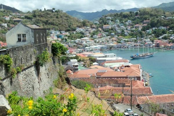 Гражданство Содружества Доминики