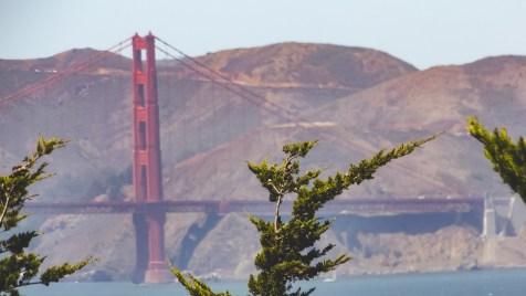 Golden Gate Bridge from the Marina