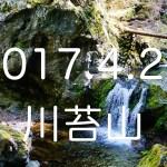 お目当ては百尋の滝!自然豊かな春の川苔山。